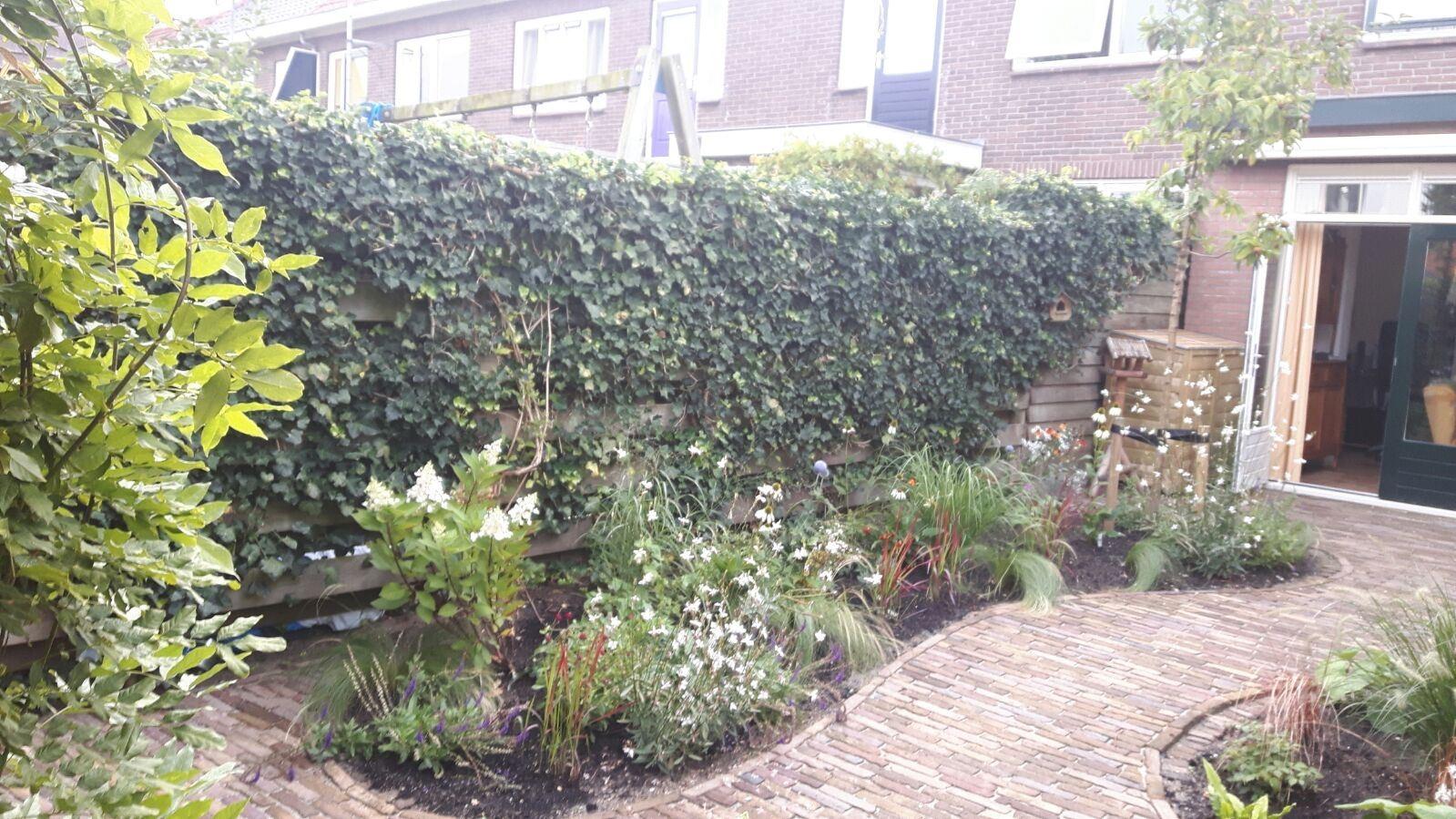 Hoveniersbedrijf Isidorus Hoeve Engelse stijl kleine tuin